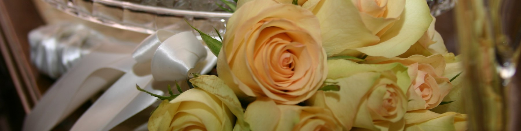 roses452